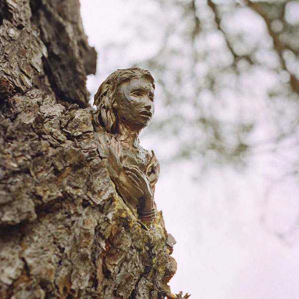 Faeries in the trees, Children's sculpture trail, Carrick Hill