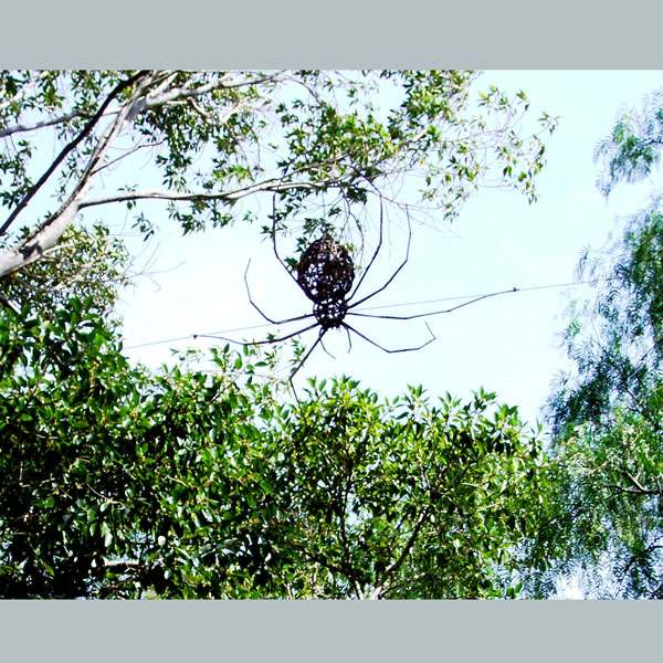Giant Spider, Children's sculpture trail, Carrick Hill